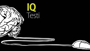 İki soruluk IQ testi