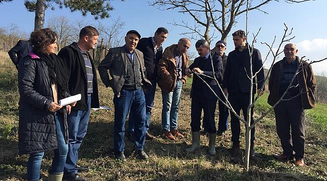 Çiftçilere yerinde eğitim
