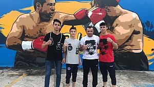 Sevindikli 3 boksör  Kahramanmaraş'ta