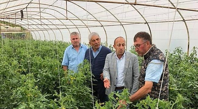 Ziraat odası yerli üreticiyi destekleyecek