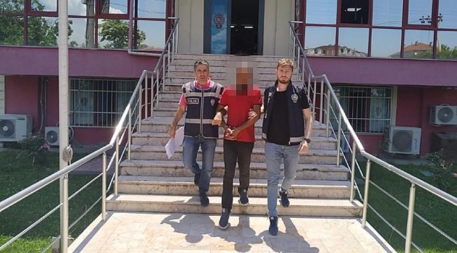 Darıca'daki cami faresi yakalandı