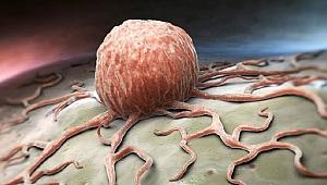 Erken kalkmak kanser riskini azaltır mı?