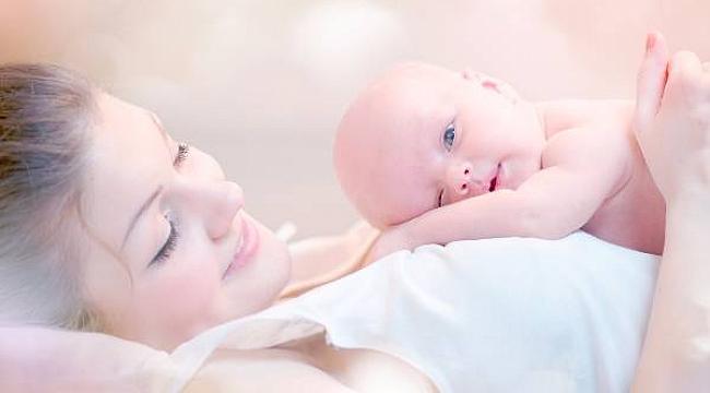 Embriyo yapıştırma yöntemi