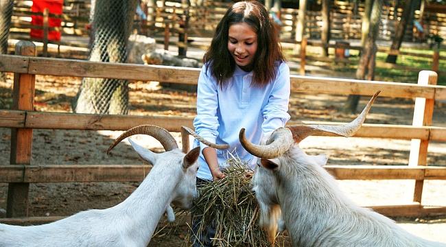 Ormanya'da hayvan sevgisi aşılandı