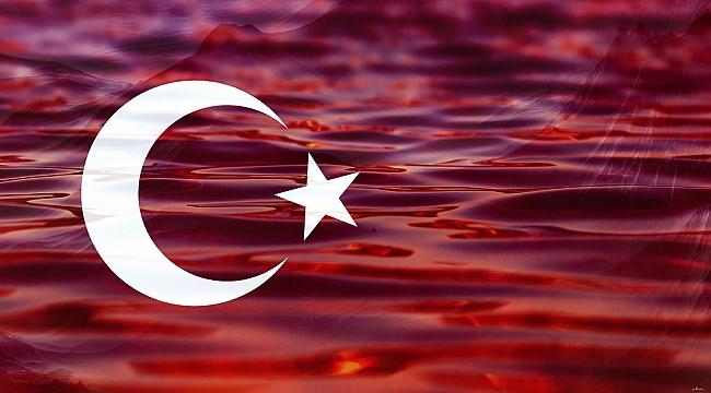 Spor camiasından Barış Pınarı Harekatı'na destek