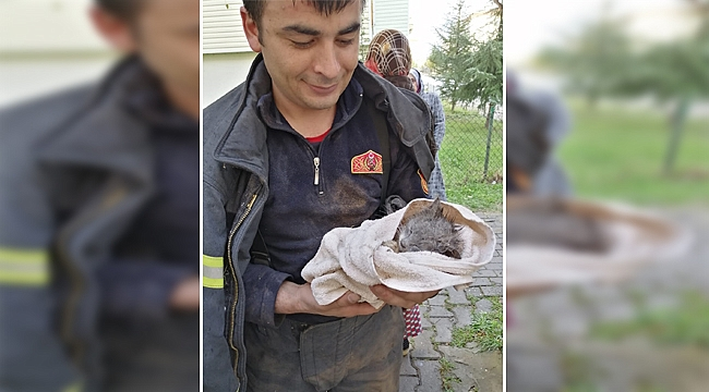 İtfaiye ekipleri kediyi ölümden kurtardı