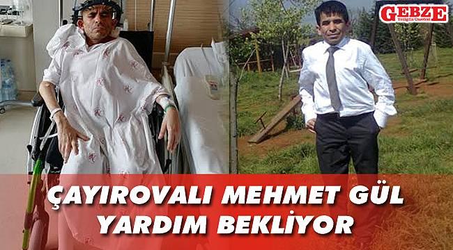 Çayırovalı Mehmet Gül yardım bekliyor