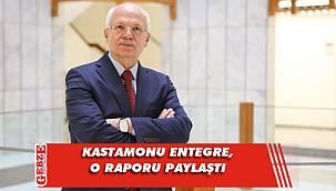 Kastamonu Entegre'den sektörü ilgilendiren rapor