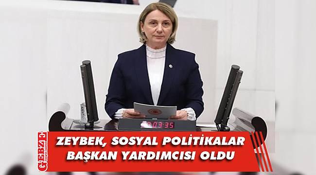 Milletvekili Zeybek'e önemli görev