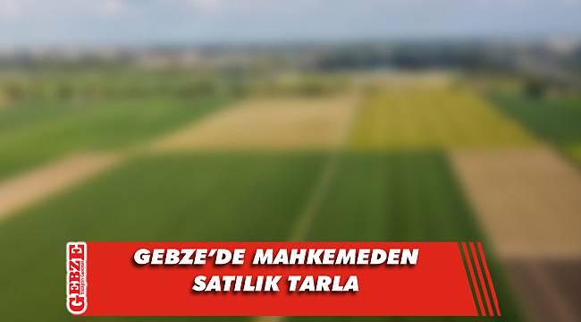 Gebze'de 5 bin 242 metrekare tarla mahkemeden satılık