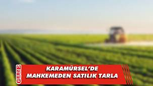 Karamürsel'de mahkemeden satılık tarla