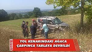 Tarlaya devrilen aracın sürücüsü yaralandı