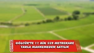 Gölcük'te 11 bin 559 metrekare tarla mahkemeden satılık