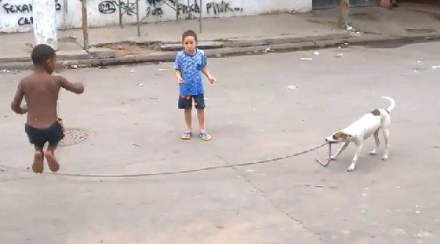 İp atlayan çocukların oyun arkadaşı köpek oldu